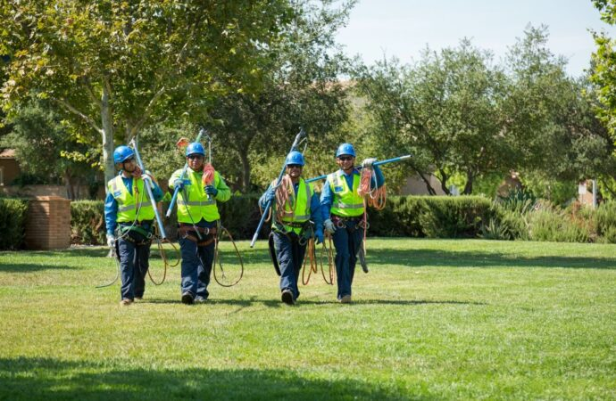 Del Mar-San Diego County CA Tree Trimming and Stump Grinding Services-We Offer Tree Trimming Services, Tree Removal, Tree Pruning, Tree Cutting, Residential and Commercial Tree Trimming Services, Storm Damage, Emergency Tree Removal, Land Clearing, Tree Companies, Tree Care Service, Stump Grinding, and we're the Best Tree Trimming Company Near You Guaranteed!