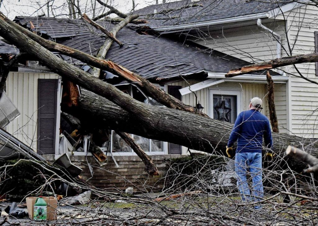 Storm Damage-San Diego County CA Tree Trimming and Stump Grinding Services-We Offer Tree Trimming Services, Tree Removal, Tree Pruning, Tree Cutting, Residential and Commercial Tree Trimming Services, Storm Damage, Emergency Tree Removal, Land Clearing, Tree Companies, Tree Care Service, Stump Grinding, and we're the Best Tree Trimming Company Near You Guaranteed!